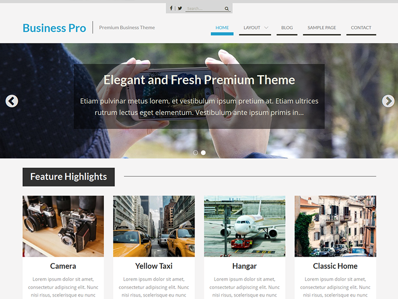 business-pro-single - Theme Palace