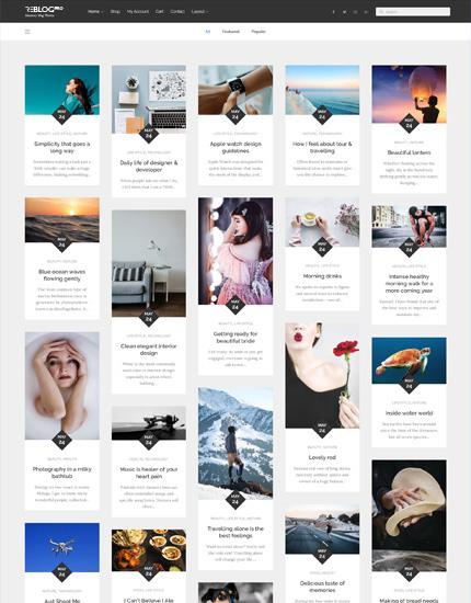 Reblog Pro