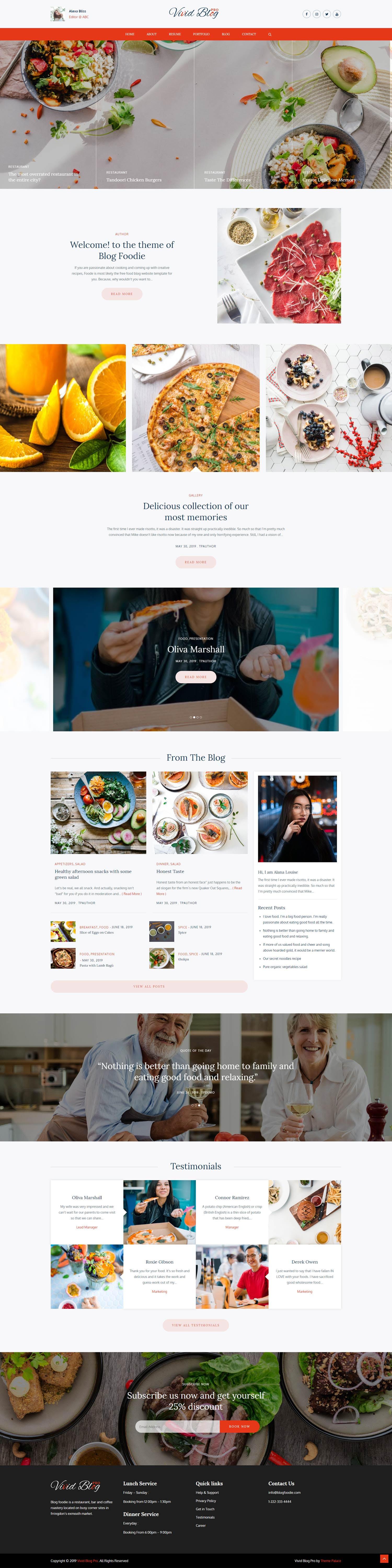 Vivid Blog Pro